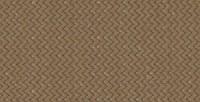 CinnamonDRIZWeb-300x240