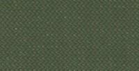 OliveDRIZWeb-300x240